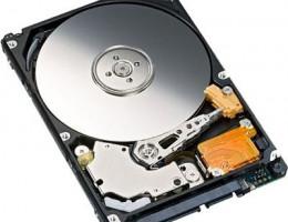 43X0285 146GB 2.5in 10K SAS Hot-Swap Express